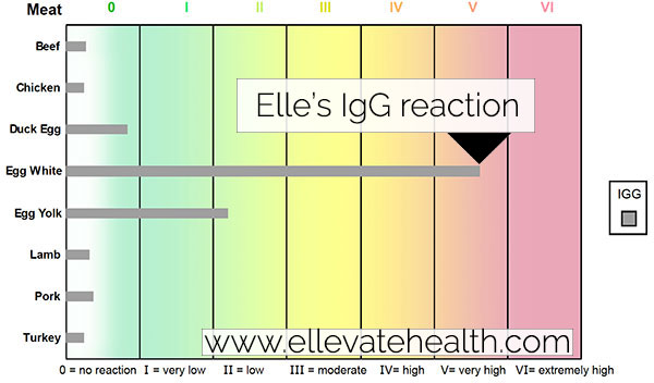 My IgG Test Results